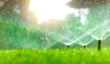 King's Landscapers - Irrigation Installation