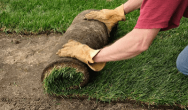 King's Landscapers - Laying Sod & Seeding Lawns